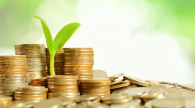 Green Bonds: Innovative Financing for a Low-carbon Transition